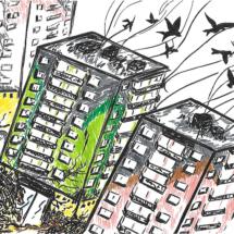 Dessin envol des oiseaux